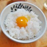 「【松本ファーム 烏骨鶏の卵】栄養満点なコク濃い卵!どんな料理に使っても最高に美味しくなる♪」の画像(4枚目)
