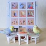 ルル&メル:ママが、ボクたちのシールとキーホルダーを作ったぞ!🐥🐥RURU&MERU: La mamma ha realizzato i nostri adesivi e portachiavi!…のInstagram画像