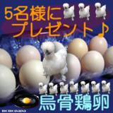 お中元に松本ファームの烏骨鶏の卵はいかがですか?モニター募集♪♪の画像(1枚目)