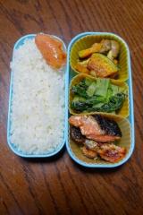 「ある日のお弁当(鮭の粕漬け焼き):ぐうたらせいかつ2」の画像(1枚目)