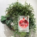 ザセム日本公式オンラインショップがオープン!低価格だけどクオリティーが高いパックは24種類♡植物性栄養成分が優れたザクロを配合。ルビーのように輝く赤の植物性栄養成分を含有し、トルコザク…のInstagram画像