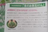 宇治田原製茶場の「京のお茶石けん」洗いあがりシットリ♪の画像(2枚目)