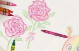 クレヨラ おえかきクレヨン64色(シャープナー付き)の画像(16枚目)