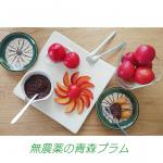 ❤️#すももの季節 ❤️おはよう😊朝ごはん、何食べた?日本で一番栽培されている品種のすもも#大石早生 (#おおしいわせ ) を食べたよ。プラム、プルーンなどすももの仲間は旬…のInstagram画像