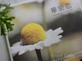 「花蜜恋♡」の画像(2枚目)