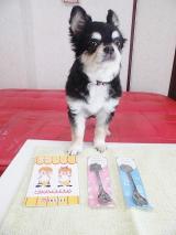 ニックン&セイチャンスプーン☆懸賞当選の画像(1枚目)