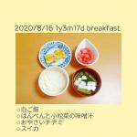 2020/8/16 1y3m17d#hazugohan*┈┈┈┈┈┈┈┈┈┈┈┈┈┈┈┈┈┈┈┈┈┈┈┈┈┈┈┈┈┈*お昼はなべやき屋キンレイのお水がいらない鍋 寄せ鍋を一緒に食べ…のInstagram画像