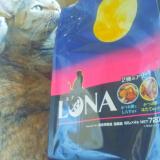【国産キャットフード〜LUNA(ルナ)〜】の画像(1枚目)