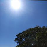 「アトピタ 保湿UVクリーム50♪withコロナの夏」の画像(5枚目)