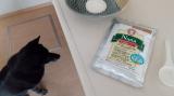 Nanaパウダータイプで手作り犬ご飯の画像(2枚目)
