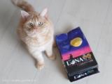 グルメな猫ちゃんに♡2種のアソートが楽しめる国産のカリカリフード「LUNA(ルナ)」 の画像(2枚目)