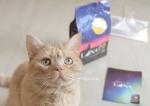 我が家のグルメなレオ君のお気に入りの国産のカリカリフード。「LUNA(ルナ) かつお節としらす&ほたて味ビッツ添え」・・・星形の粒が可愛いお魚とお肉味のカリカリに、猫ち…のInstagram画像