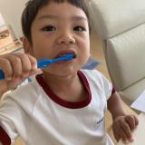 歯磨きは仕方なくやる事が多い息子