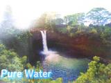 スーパーフードで体調管理・ハワイからの贈り物「ハワイアンスピルリナ&発酵クロレラ」の画像(2枚目)