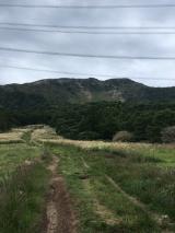 「伊吹山登頂(^_-)-☆」の画像(6枚目)
