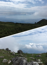 「伊吹山登頂(^_-)-☆」の画像(17枚目)