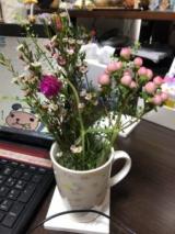 お花の定期便「 medelu 」お試しです♪の画像(4枚目)
