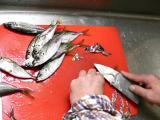 魚を捌くのは主人 調理はあたしの画像(10枚目)