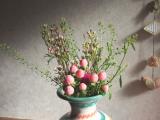 お花のある暮らし GreenSnapのお花定期便medelu♪の画像(14枚目)