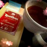 『オーガニック・プレミアム・ルイボスティー』を頂き、早速飲んでみました。ルイボスティーは最近、毛細血管を強くする=肌の美容に良いと聞いて飲んでました。こちらのルイボスティーはお茶の中で…のInstagram画像