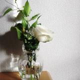 おうちにかわいいお花を飾りませんか?*medeluのお花定期便の画像(9枚目)
