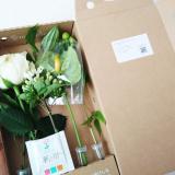 おうちにかわいいお花を飾りませんか?*medeluのお花定期便の画像(4枚目)