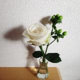 おうちにかわいいお花を飾りませんか?*medeluのお花定期便の画像(11枚目)