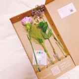 「花のある暮らし⁂medelu」の画像(3枚目)