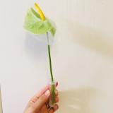「【PR】生花がポストに届く」の画像(3枚目)