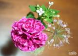 「☆ GreenSnapさん medeluのお花定期便 ANYROOMコースをお試し!日々の生活にお花を♪」の画像(16枚目)