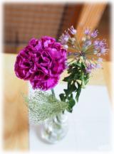「☆ GreenSnapさん medeluのお花定期便 ANYROOMコースをお試し!日々の生活にお花を♪」の画像(15枚目)