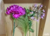 「☆ GreenSnapさん medeluのお花定期便 ANYROOMコースをお試し!日々の生活にお花を♪」の画像(5枚目)