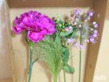 「☆ GreenSnapさん medeluのお花定期便 ANYROOMコースをお試し!日々の生活にお花を♪」の画像(12枚目)