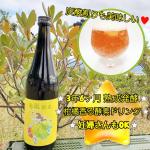 *レモン&ライムテイスト 『🍇美誕酵素🍋🥦』*酵素は言わずと知れた美容と健康の強力サポーター💪*甘いとろとろの蜜のような酵素は水や炭酸水などにすぐに溶け自宅で簡単に酵素ドリンクが作…のInstagram画像