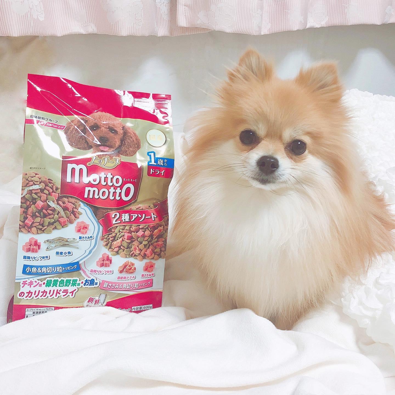 口コミ投稿:ᕱ⑅ᕱ.。oO ( #dog ♡ )⠀⠀⠀大切な家族の一員 ワンちゃんのごはんも⠀きちんとこだわりたい…