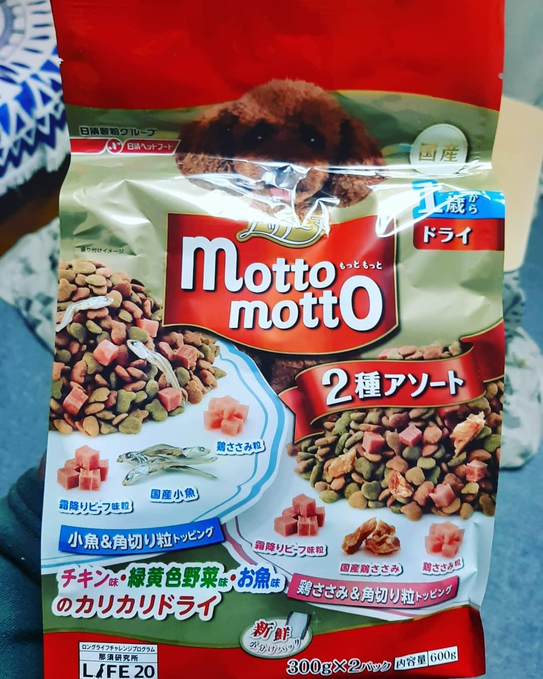 口コミ投稿:日清ペットフード株式会社さんのプッチーヌ mottomottoを頂きました❤くむちゃん前歯…