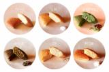 「こめ油と米粉の和フィナンシェ 6種アソート食べてみよう♪」の画像(3枚目)