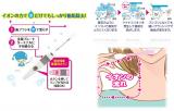 除菌できるケースが便利☆キスユー歯ブラシ ケースセット!の画像(4枚目)