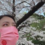 昨日は公休天気も良かったのと、上野に用事があったので上野公園へ行ってきました♪桜が綺麗に咲き乱れており自然の力を身体一杯に感じましたこのご時世なの…のInstagram画像