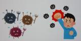 「Re:fata(リファータ)フルーツと野菜のおいしい青汁 キレイと元気を美味しく応援③」の画像(17枚目)