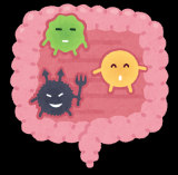 「Re:fata(リファータ)フルーツと野菜のおいしい青汁 キレイと元気を美味しく応援③」の画像(15枚目)