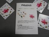 Pigasus ピガサスで遊んでみたよ♪の画像(5枚目)