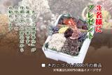 56,ド~ンときのこ3000円分当てよう!の画像(2枚目)