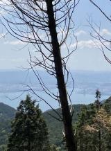 「北山コース再び~大原の里へ」の画像(7枚目)