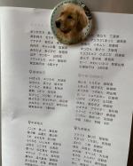 愛犬のゴールデンレトリバーくんのマグネットつくっちゃいました❤️七田式の日本地図の歌詞カードを冷蔵庫に貼って、子供と歌ってます🗾写真マグネットは、丸タイプのLサイズ1個440円とお手頃なので、…のInstagram画像