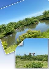 釧路湿原その1~細岡展望台からの眺望の画像(5枚目)