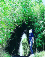 土曜日の野球の付き添いは暑かった😵謎な竹藪のトンネルでひと休憩🎋.そんな暑い日に助かっているのは、FACE COVER🌞.冷却プリントによる吸熱効果と気化熱利用で水、汗、風を利用し…のInstagram画像