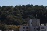 「野島公園駅 忙しい時でもパパッと作って食べられる、あったか丼ものレシピ募集! ボール&コランダーセット」の画像(7枚目)