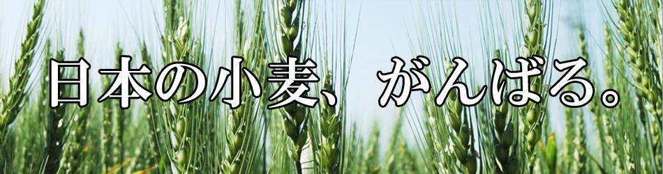 日本の麦の底力のヘッダー画像