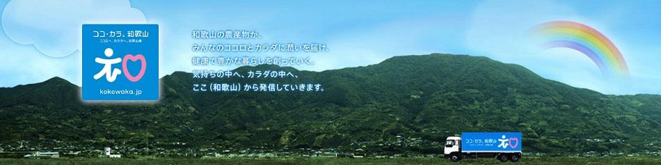 和歌山ノーキョー食品工業株式会社のファンサイト「和歌山ノーキョー食品工業」